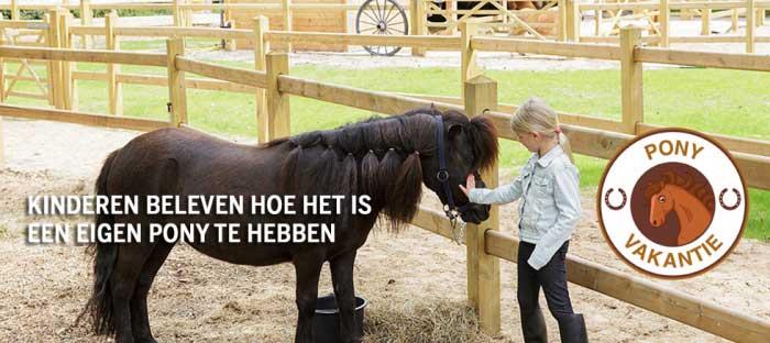 Beleef hoe het is om een eigen pony te hebben