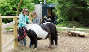 Kinderen mogen met hun pony knuffelen, verzorgen en erop rijden