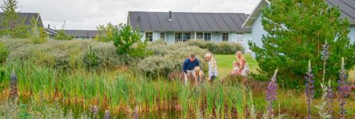Landal Dayz Seawest: Ideaal voor gezinsvakanties