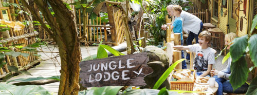 Jungle Cabana is back to basic