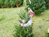 Kerstvakantie: Vanaf € 217*