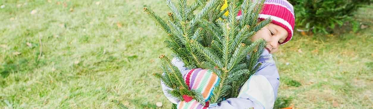 Beleef een mooie kerstvakantie bij Landal GreenParks