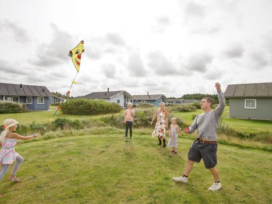 Dayz Seawest, Denemarken