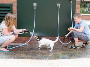 Parkfaciliteiten voor honden