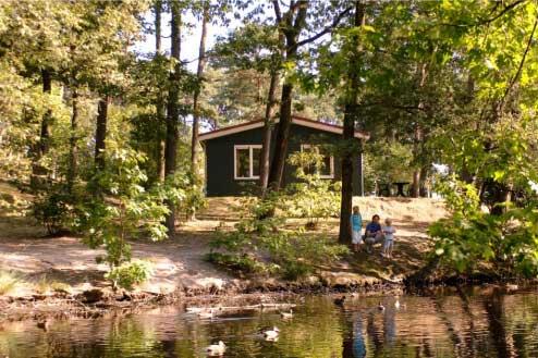 19. Bospark 't Wolfsven, Noord-Brabant