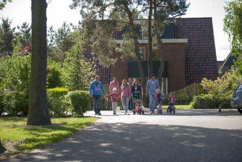 3. De Katjeskelder, Noord-Brabant