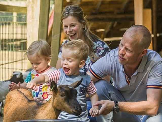 Gezin met kinderen zijn geitjes aan het aaien bij een kinderboerderij van een Landal park