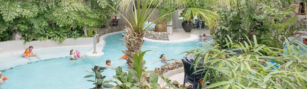 Subtropisch zwembad vlakbij Landal Resort Haamstede